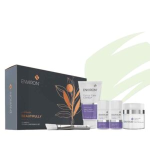 group shot of Environ Clarity Christmas set